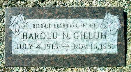 GILLUM, HAROLD NEWTON - Yavapai County, Arizona | HAROLD NEWTON GILLUM - Arizona Gravestone Photos