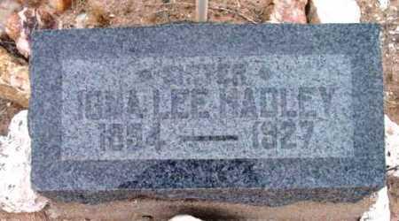 HADLEY, IONA LEE - Yavapai County, Arizona | IONA LEE HADLEY - Arizona Gravestone Photos
