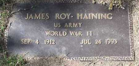 HAINING, JAMES ROY - Yavapai County, Arizona | JAMES ROY HAINING - Arizona Gravestone Photos