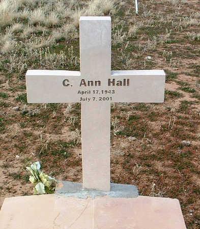 HALL, C. ANN - Yavapai County, Arizona | C. ANN HALL - Arizona Gravestone Photos