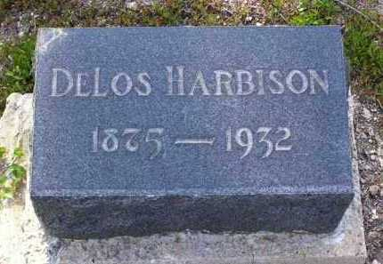 HARBISON, DELOS - Yavapai County, Arizona | DELOS HARBISON - Arizona Gravestone Photos