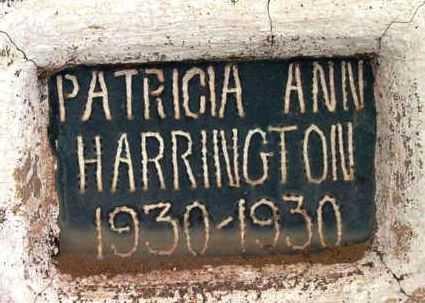 HARRINGTON, PATRICIA ANN - Yavapai County, Arizona | PATRICIA ANN HARRINGTON - Arizona Gravestone Photos