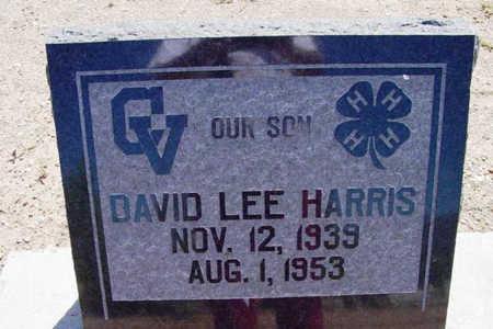 HARRIS, DAVID LEE - Yavapai County, Arizona   DAVID LEE HARRIS - Arizona Gravestone Photos