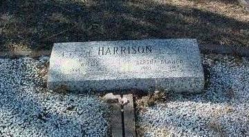 HARRISON, WILLIS - Yavapai County, Arizona | WILLIS HARRISON - Arizona Gravestone Photos