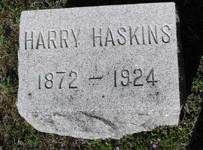 HASKINS, HARRY - Yavapai County, Arizona   HARRY HASKINS - Arizona Gravestone Photos