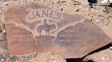 JANES, OLIVER DEMING - Yavapai County, Arizona | OLIVER DEMING JANES - Arizona Gravestone Photos