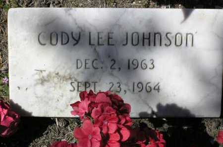 JOHNSON, CODY LEE - Yavapai County, Arizona | CODY LEE JOHNSON - Arizona Gravestone Photos