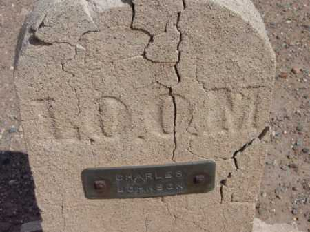 JOHNSON, CHARLES E. - Yavapai County, Arizona | CHARLES E. JOHNSON - Arizona Gravestone Photos