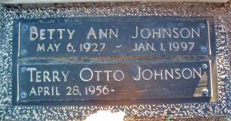 JOHNSON, TERRY OTTO - Yavapai County, Arizona | TERRY OTTO JOHNSON - Arizona Gravestone Photos
