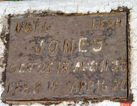 JONES, NOEL  LEE - Yavapai County, Arizona | NOEL  LEE JONES - Arizona Gravestone Photos