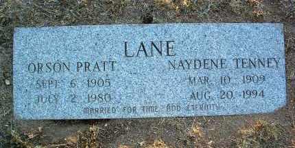LANE, NAYDENE - Yavapai County, Arizona | NAYDENE LANE - Arizona Gravestone Photos