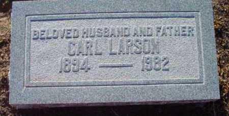 LARSON, CARL F. - Yavapai County, Arizona | CARL F. LARSON - Arizona Gravestone Photos