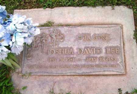 LEE, JOSHUA DAVID - Yavapai County, Arizona | JOSHUA DAVID LEE - Arizona Gravestone Photos