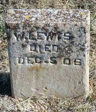LEWIS, WILLIAM - Yavapai County, Arizona | WILLIAM LEWIS - Arizona Gravestone Photos