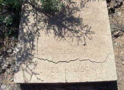 LISCANO, DOLORES - Yavapai County, Arizona | DOLORES LISCANO - Arizona Gravestone Photos