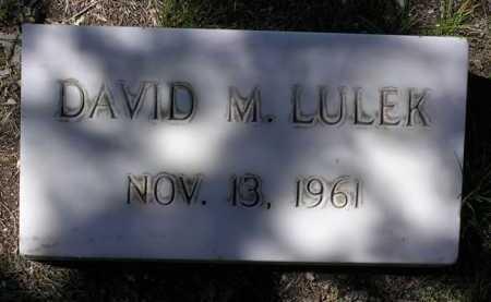 LULEK, DAVID M. - Yavapai County, Arizona | DAVID M. LULEK - Arizona Gravestone Photos