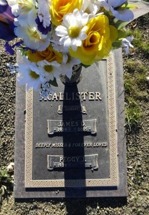 MCCALLISTER, JAMES D. - Yavapai County, Arizona   JAMES D. MCCALLISTER - Arizona Gravestone Photos