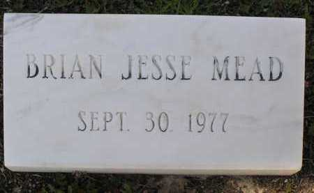MEADOWS, BRIAN JESSE - Yavapai County, Arizona   BRIAN JESSE MEADOWS - Arizona Gravestone Photos