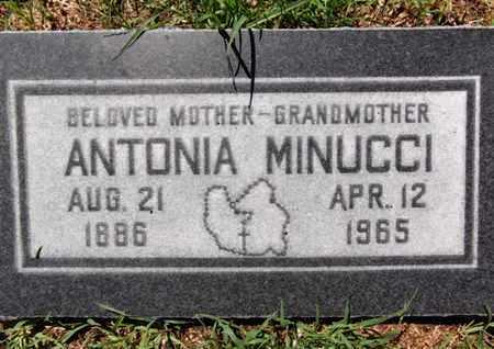SILVA MINUCCI, ANTONIA - Yavapai County, Arizona   ANTONIA SILVA MINUCCI - Arizona Gravestone Photos