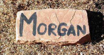 MORGAN, UNKNOWN - Yavapai County, Arizona   UNKNOWN MORGAN - Arizona Gravestone Photos