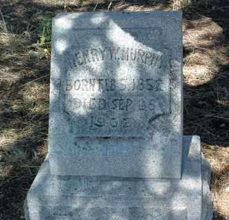 MURPHY, HENRY WESTON - Yavapai County, Arizona   HENRY WESTON MURPHY - Arizona Gravestone Photos
