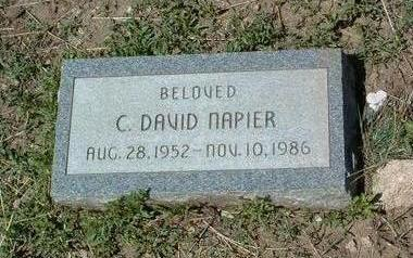 NAPIER, CURTIS DAVID - Yavapai County, Arizona | CURTIS DAVID NAPIER - Arizona Gravestone Photos