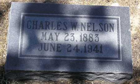 NELSON, CHARLES WILLIAM - Yavapai County, Arizona | CHARLES WILLIAM NELSON - Arizona Gravestone Photos
