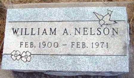 NELSON, WILLIAM A. - Yavapai County, Arizona | WILLIAM A. NELSON - Arizona Gravestone Photos