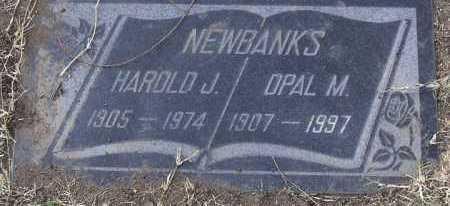 NEWBANKS, OPAL M. - Yavapai County, Arizona | OPAL M. NEWBANKS - Arizona Gravestone Photos