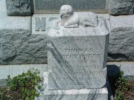 NORRIS, THOMAS GILBERT - Yavapai County, Arizona | THOMAS GILBERT NORRIS - Arizona Gravestone Photos