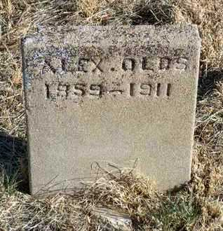 OLDS, ALEXANDER - Yavapai County, Arizona | ALEXANDER OLDS - Arizona Gravestone Photos