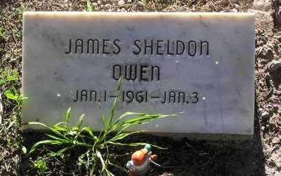 OWEN, JAMES SHELDON - Yavapai County, Arizona | JAMES SHELDON OWEN - Arizona Gravestone Photos
