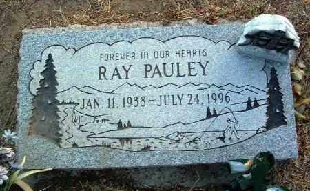 PAULEY, CURTIS RAY - Yavapai County, Arizona | CURTIS RAY PAULEY - Arizona Gravestone Photos