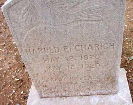 PECHARICH, HAROLD - Yavapai County, Arizona | HAROLD PECHARICH - Arizona Gravestone Photos