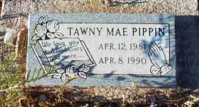 PIPPIN, TAWNY MAE - Yavapai County, Arizona | TAWNY MAE PIPPIN - Arizona Gravestone Photos