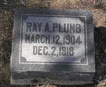 PLUMB, RAY A. - Yavapai County, Arizona | RAY A. PLUMB - Arizona Gravestone Photos