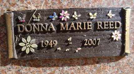 REED, DONNA MARIE - Yavapai County, Arizona | DONNA MARIE REED - Arizona Gravestone Photos