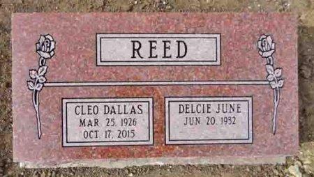 REED, DULCIE JUNE - Yavapai County, Arizona | DULCIE JUNE REED - Arizona Gravestone Photos