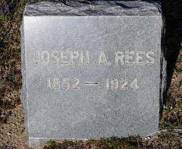 REES, JOSEPH ALBERT - Yavapai County, Arizona   JOSEPH ALBERT REES - Arizona Gravestone Photos