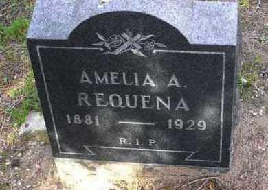 REQUENA, AMELIA A. - Yavapai County, Arizona | AMELIA A. REQUENA - Arizona Gravestone Photos