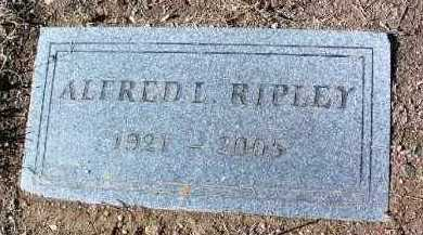 RIPLEY, ALFRED LEWIS - Yavapai County, Arizona | ALFRED LEWIS RIPLEY - Arizona Gravestone Photos