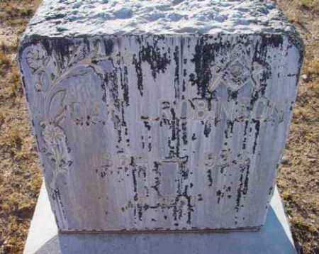 ROBINSON, DAN L. - Yavapai County, Arizona | DAN L. ROBINSON - Arizona Gravestone Photos