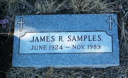 SAMPLES, JAMES R. - Yavapai County, Arizona | JAMES R. SAMPLES - Arizona Gravestone Photos