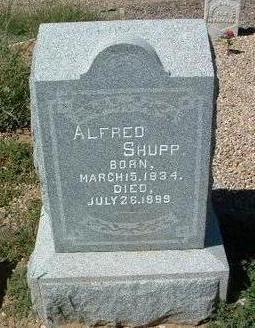 SHUPP, ALFRED A. - Yavapai County, Arizona | ALFRED A. SHUPP - Arizona Gravestone Photos