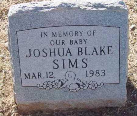 SIMS, JOSHUA BLAKE - Yavapai County, Arizona | JOSHUA BLAKE SIMS - Arizona Gravestone Photos
