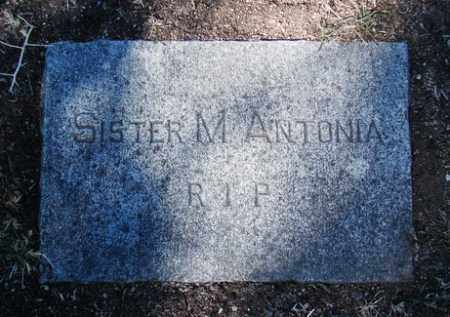 SISTER, MARY ANTONIA - Yavapai County, Arizona | MARY ANTONIA SISTER - Arizona Gravestone Photos