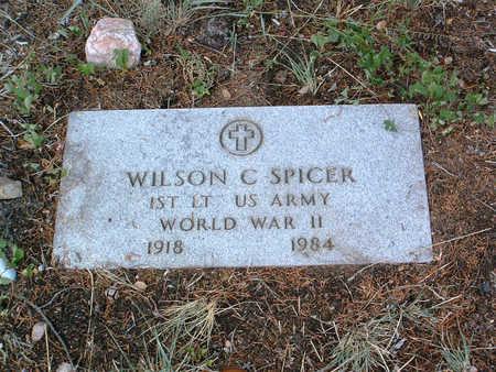 SPICER, WILSON - Yavapai County, Arizona | WILSON SPICER - Arizona Gravestone Photos