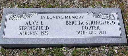 STRINGFIELD, ALICE LOUISE - Yavapai County, Arizona | ALICE LOUISE STRINGFIELD - Arizona Gravestone Photos