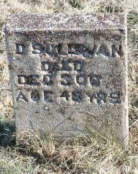 SULLIVAN, DENNIS - Yavapai County, Arizona | DENNIS SULLIVAN - Arizona Gravestone Photos