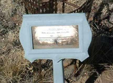 TEDFORD, SHIRLEY E. - Yavapai County, Arizona | SHIRLEY E. TEDFORD - Arizona Gravestone Photos